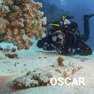 Experiencia submarina de buce en Tenerife con el experto local canario Óscar