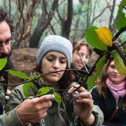 experiencia-naturaleza-ruta-senderismo-tenerife-laura-3